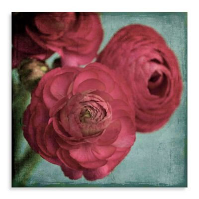 Parvez Taj Red Ranunculus 24-Inch x 24-Inch Canvas Wall Art