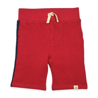 Burt's Bees Baby® Size 18M Loose Pique Racing Stripe Short in Red/Navy