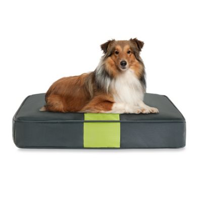 Track & Tail Marley 30-Inch x 20-Inch Rectangular Pet Napper in Grey/Citron