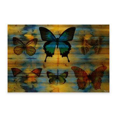 Parvez Taj Lepidoptera 60-Inch x 40-Inch Wood Wall Art