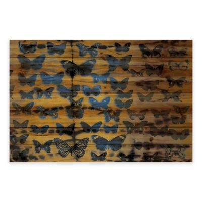 Parvez Taj Moth Colors 60-Inch x 40-Inch Wood Wall Art