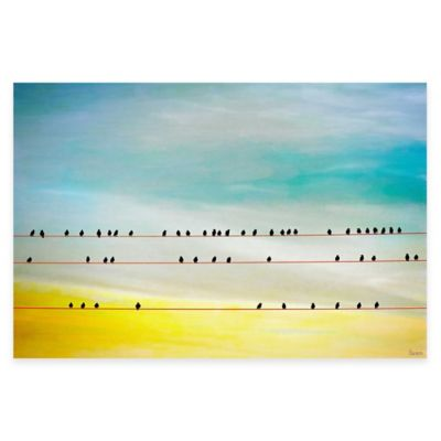 Parvez Taj Birds Hangin' 60-Inch x 40-Inch Canvas Wall Art