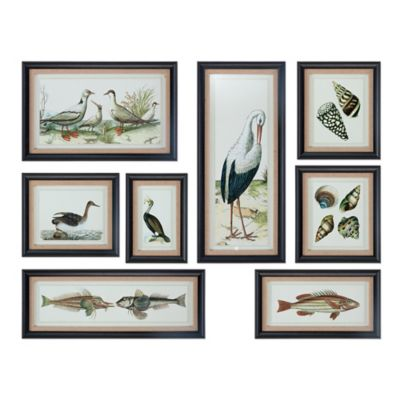 Uttermost Seashore Collage Prints Wall Art (Set of 8)