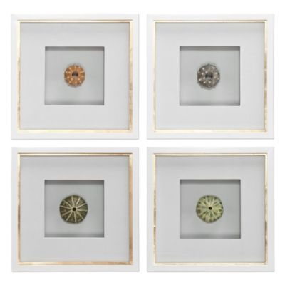 Uttermost Sea Urchins Shadow Box Wall Art (Set of 4)