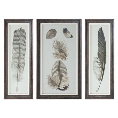 Uttermost Feather Study Wall Art Prints (Set of 3)