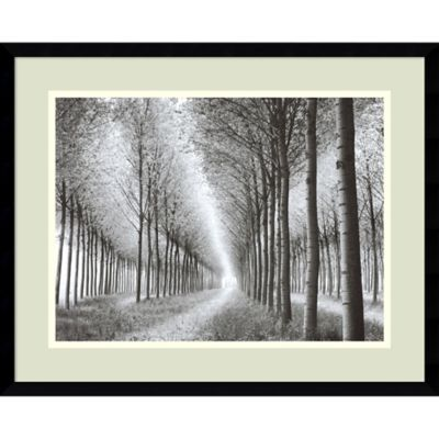 Chip Forelli Tree Parade Framed Wall Art