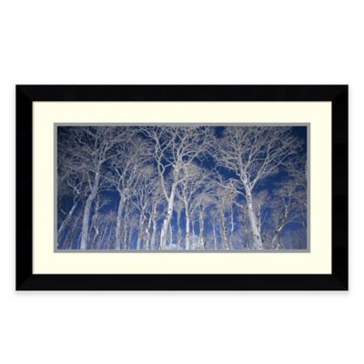 Micha Pawlitzki Birch Trees Framed Wall Art