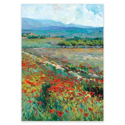 View of Provence Canvas Wall Art