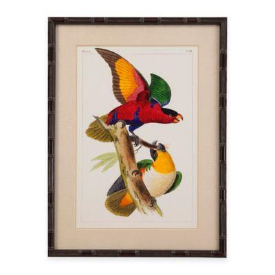 Bassett Mirror Company Lemaire Parrots I Framed Wall Art