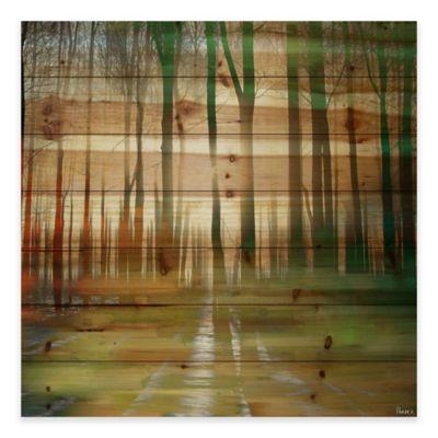 Parvez Taj 24-Inch x 24-Inch Ajax Pine Wood Wall Art