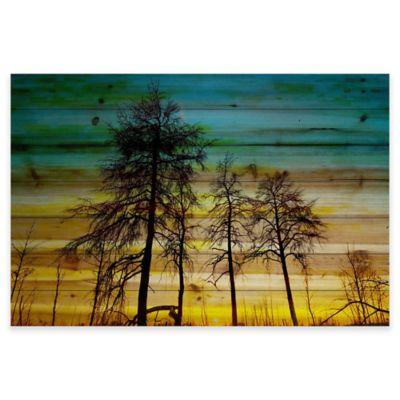 Parvez Taj 36-Inch x 24-Inch Emerald Sky Pine Wood Wall Art
