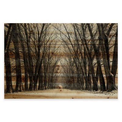 Parvez Taj Tree Path 36-Inch x 24-Inch Pine Wood Wall Art