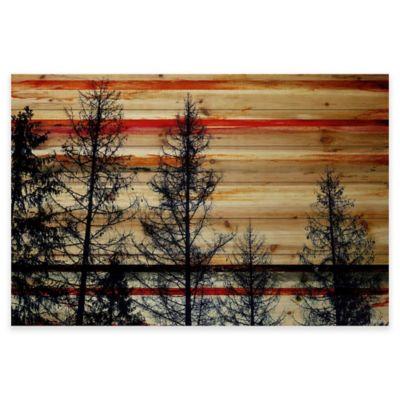Parvez Taj Trees Against Red Sky 36-Inch x 24-Inch Pine Wood Wall Art