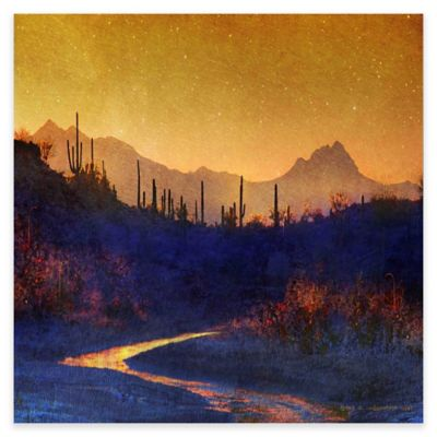 Marmont Hill Sunset Saguaros 24-Inch Square Canvas Wall Art