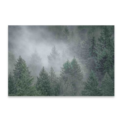 Marmont Hill 30-Inch x 20-Inch Draped in Clouds Canvas Wall Art