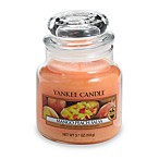 Yankee Candle® Housewarmer® Mango Peach Salsa Small Classic Jar Candle