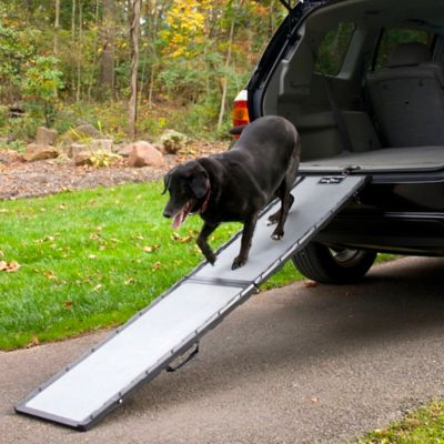 Black Pet Ramp
