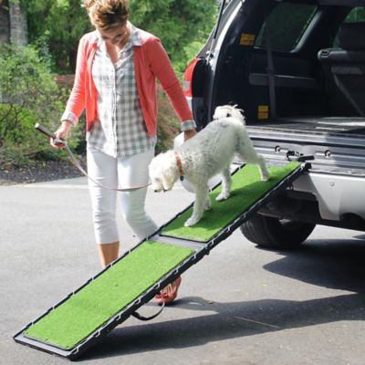 Car Dog Ramp