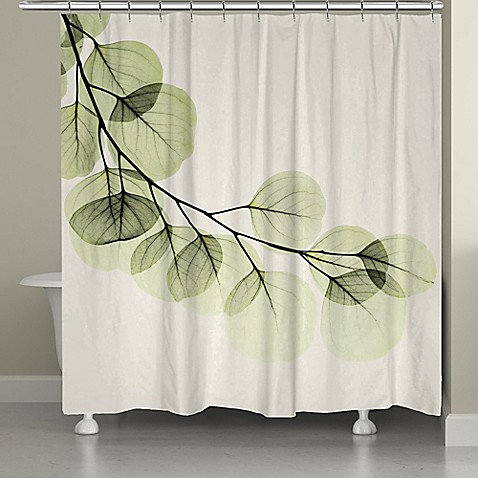 Laural Home 174 Eucalyptus Shower Curtain Www
