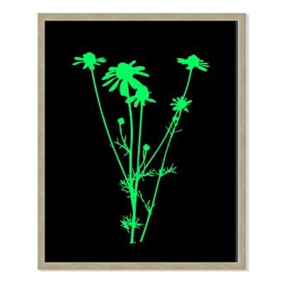 Neon Plant Black VII 31-Inch x 40-Inch Framed Print