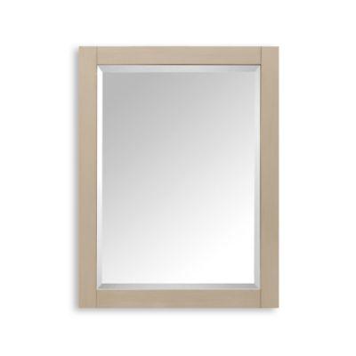 Avanity Delano Mirror Cabinet Medicine Cabinets