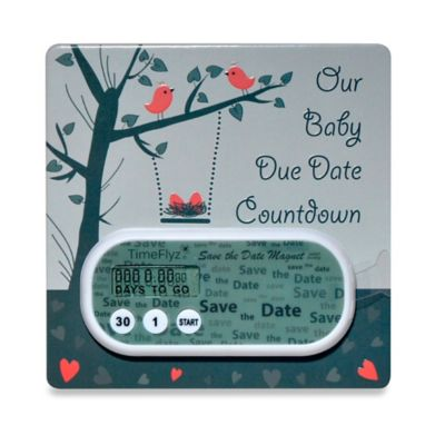 Countables® Green Nesting Birds Baby Due Countdown Timer with Magnet