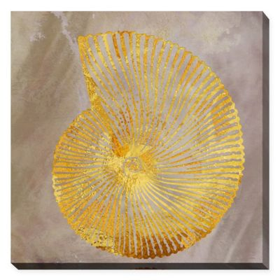 Fashion Art by Jodi 24-Inch x 24-Inch Sea Shell II Giclee Print Wall Art