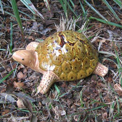 Bosmere Ceramic Garden Tortoise in Brown