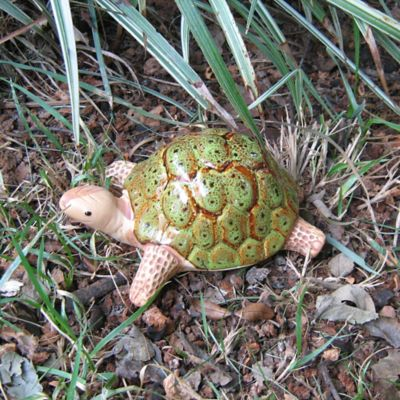 Bosmere Ceramic Garden Tortoise in Green
