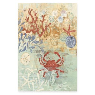 Parvez Taj 24-Inch x 36-Inch Coastal Floral Frenzy IV Canvas Wall Art