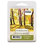 AmbiEscents 6-Pack Into the Woods Wax Fragrance Cubes