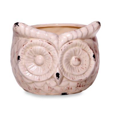 Home Essentials & Beyond Ceramic Indoor/Outdoor Antique Owl Flower Pot in Ivory