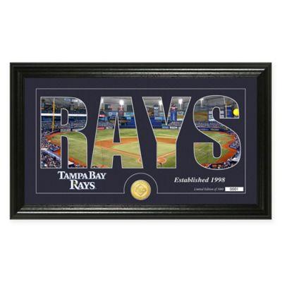 MLB Tampa Bay Rays Silhouette Word Art Photo Mint