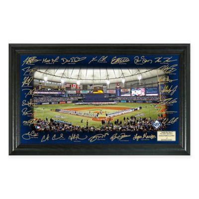 MLB Tampa Bay Rays 2016 Signature Field