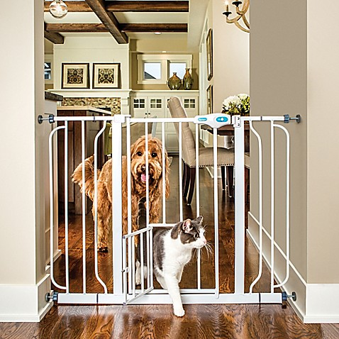 Buy Carlson Extra Wide Walk Thru Gate With Small Pet Door
