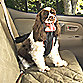 Small Pet Safety Vehicle Harness