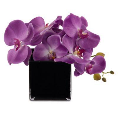 John-Richard Paradise Purple Flower Floral Arrangement in Purple/Black