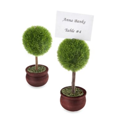Kate Aspen® Topiary Photo/Placecard Holders (Set of 4)