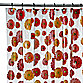 Gerber Daisy Vinyl Shower Curtain byinterdesign®
