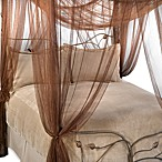 Majesty Bed Canopy in Coco Brown