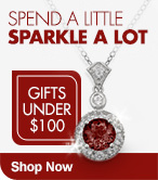 Shop Now Gifts Under $100