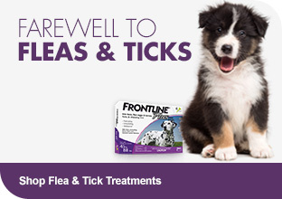 Shop Flea & Tick Treatments