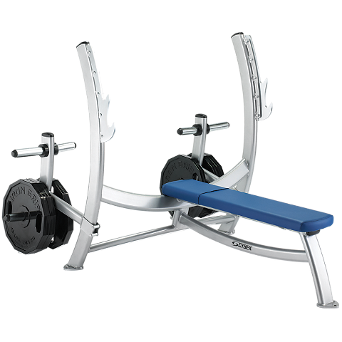 Olympic Bench Press With Weight Storage Cybex