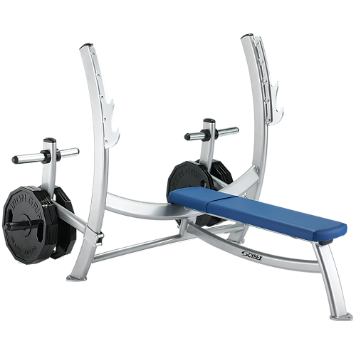 Olympic Bench Press with Weight Storage