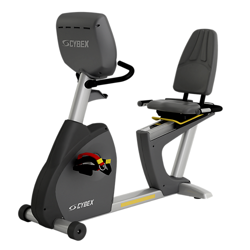Total Access Recumbent Bike