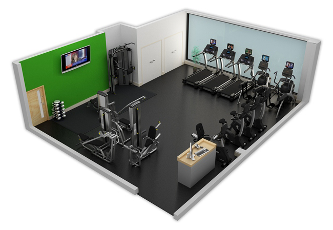 Sample Fitness Facility 1 Cybex
