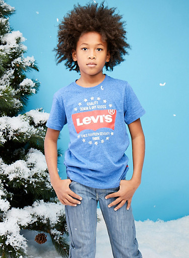 Boys 8-20 Levis T Shirt with Logo Graphic,BLUE,large