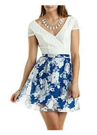 Lace & Floral Organza Skater Dress
