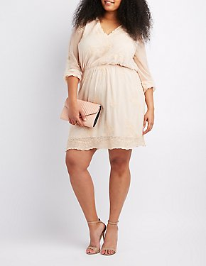 Plus Size Embroidered Lace Skater Dress