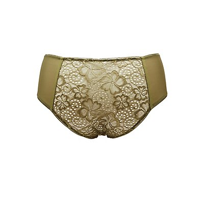 Pluse Size Lace & Mesh Hipster Panties